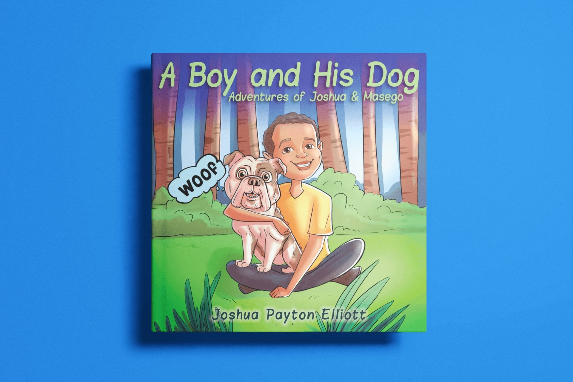 A boy and his dog - hardcover-book