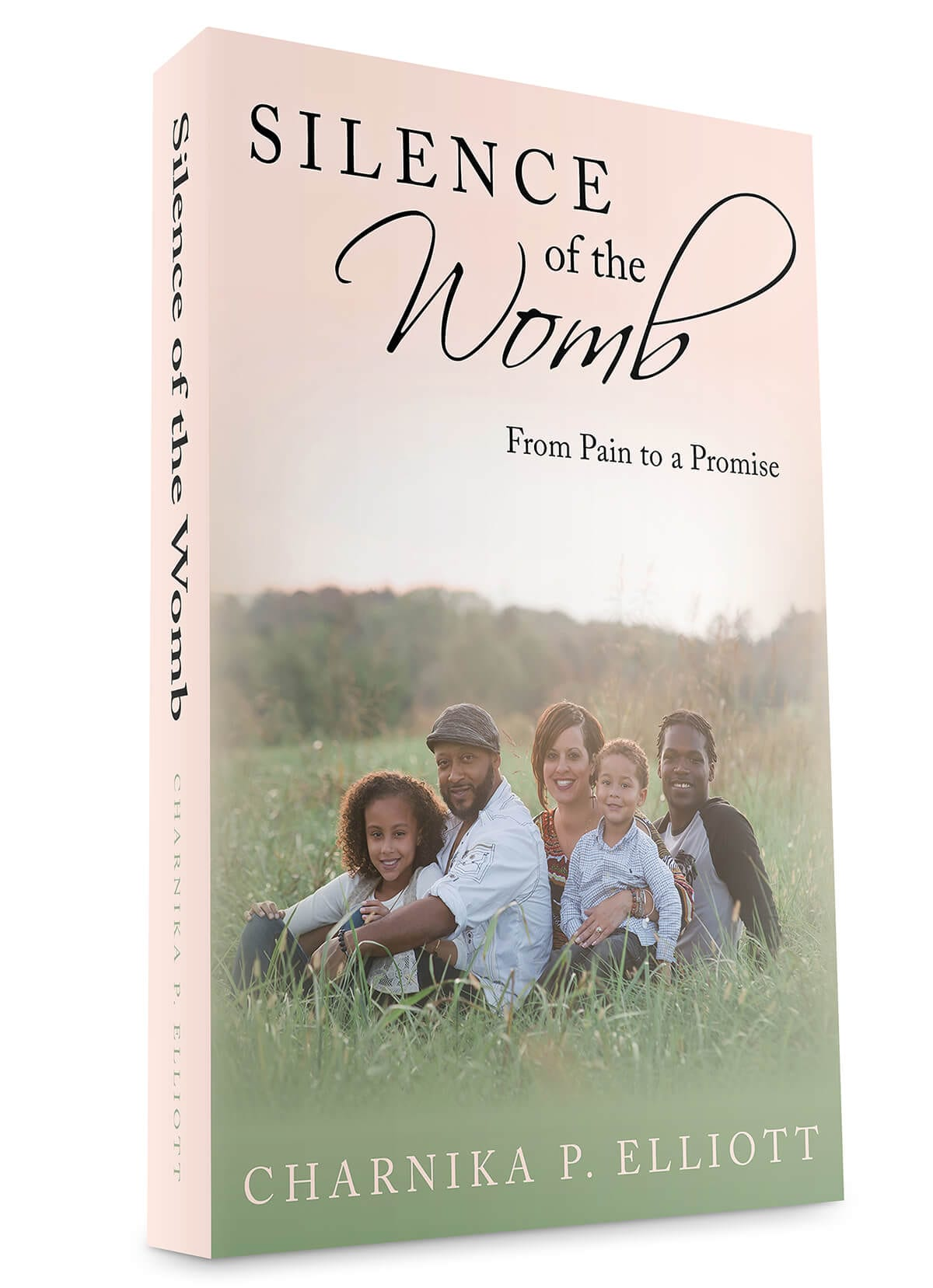 Silence of the Womb book